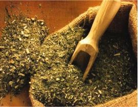 чай мате для похудения отзывы